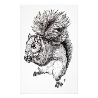 Squirrel Ink Illustration on Paper