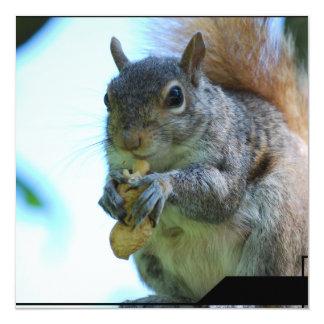 Squirrel Invitations