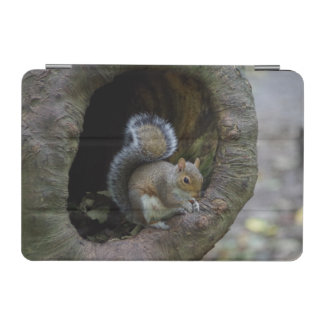 Squirrel iPad Cover