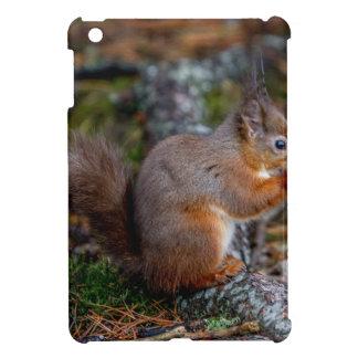 Squirrel iPad Mini Cases