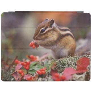 Squirrel iPad Smart Cover