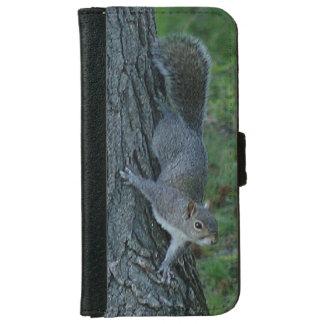 Squirrel, iPhone Wallet Case.