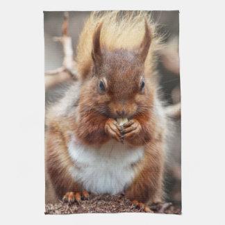 Squirrel Kitchen towel