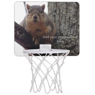 Squirrel looking at your mini basketball game mini basketball hoop