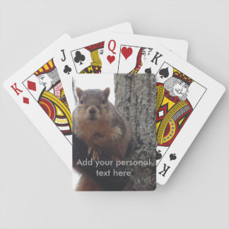 Squirrel looking at your playing cards