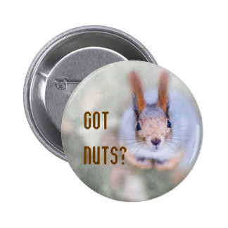 Squirrel looks at you from the bottom up 6 cm round badge