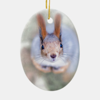 Squirrel looks at you from the bottom up christmas ornament