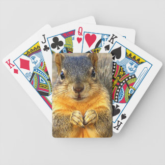 Squirrel Love_ Bicycle Playing Cards