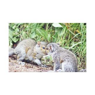 squirrel love canvas canvas print