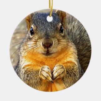 Squirrel Love_ Christmas Ornament