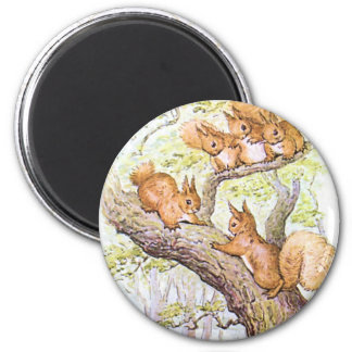 Squirrel Meeting Magnet