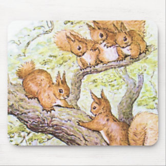 Squirrel Meeting Mouse Mat