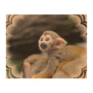 squirrel-monkey-39.jpg photo cork paper