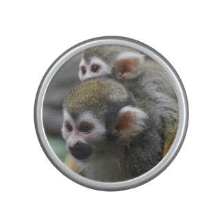 Squirrel Monkey Affair Speaker