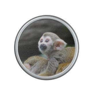 Squirrel Monkey Speaker