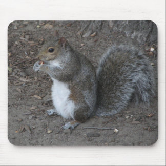 Squirrel Mouse Mat