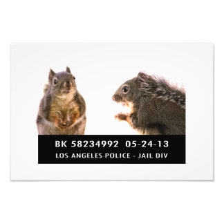 Squirrel Mug Shot Photograph