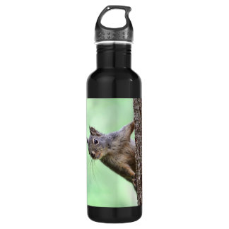 Squirrel On a Tree 710 Ml Water Bottle