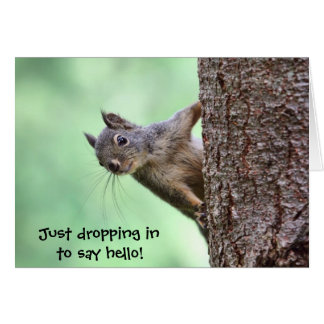 Squirrel On a Tree Greeting Card
