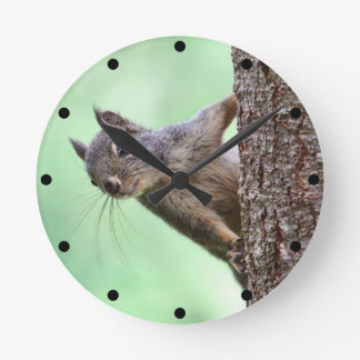 Squirrel On a Tree Round Wall Clock