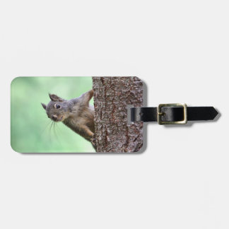 Squirrel On a Tree Travel Bag Tag