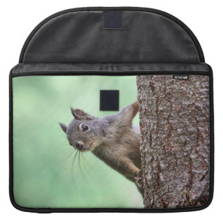 Squirrel On a Tree Sleeves For MacBooks
