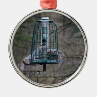 Squirrel on bird feeder christmas ornament