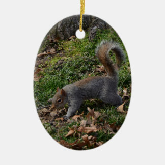 Squirrel On Forest Floor Ceramic Oval Decoration