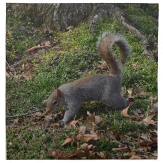 Squirrel On Forest Floor Napkin