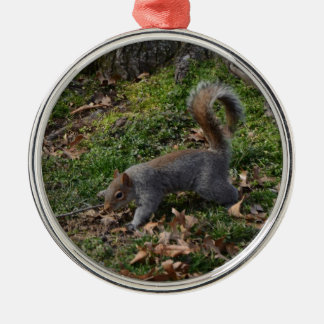 Squirrel On Forest Floor Silver-Colored Round Decoration