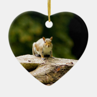 Squirrel on log christmas ornament
