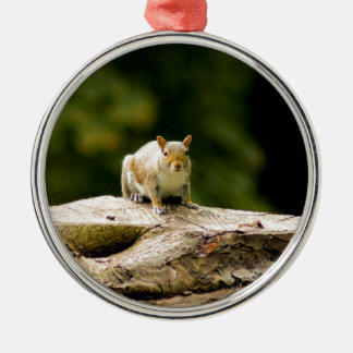 Squirrel on log christmas ornament