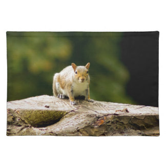 Squirrel on log placemat
