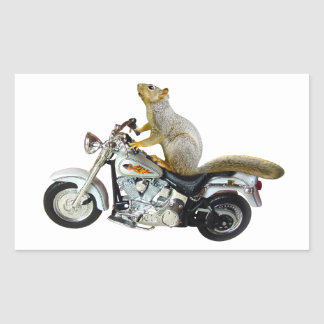 Squirrel on Motorcycle Rectangle Stickers