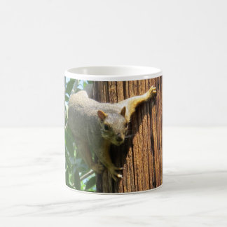 Squirrel on Pole Basic White Mug