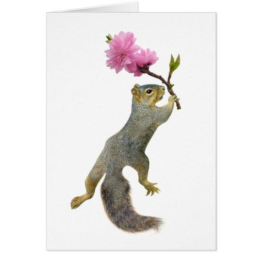 Squirrel Peach Blossom Card