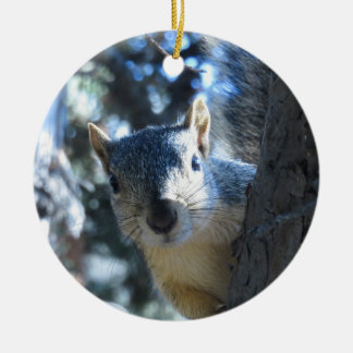 Squirrel Peeking Behind Tree - Christmas Ornament