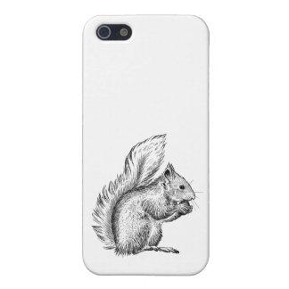 Squirrel Phone Case 5/5s iPhone 5/5S Cases
