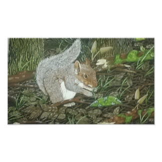 Squirrel Photo Art
