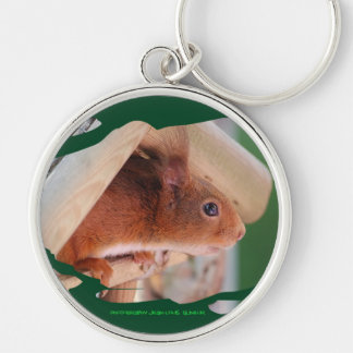 SQUIRREL - Photography Jean Louis Glineur Key Ring