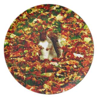 Squirrel Plate