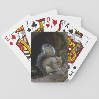 Squirrel Playing Cards