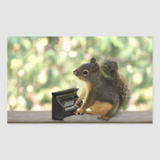 Squirrel Playing Piano Rectangle Sticker