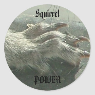 Squirrel power classic round sticker