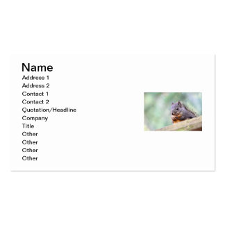 Squirrel Praying for Peanuts Pack Of Standard Business Cards