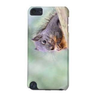Squirrel Praying for Peanuts iPod Touch 5G Covers