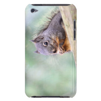 Squirrel Praying for Peanuts iPod Touch Cases