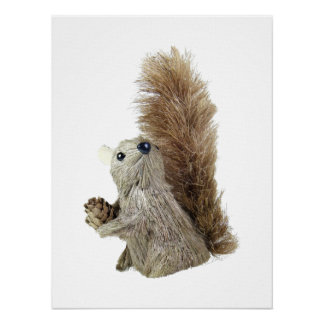 Squirrel Puppet Poster