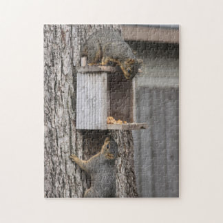 Squirrel puzzle: Two Squirrels Jigsaw Puzzle