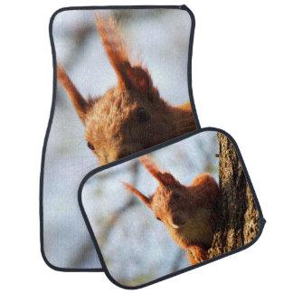 Squirrel Rodent Mammal Car Mat